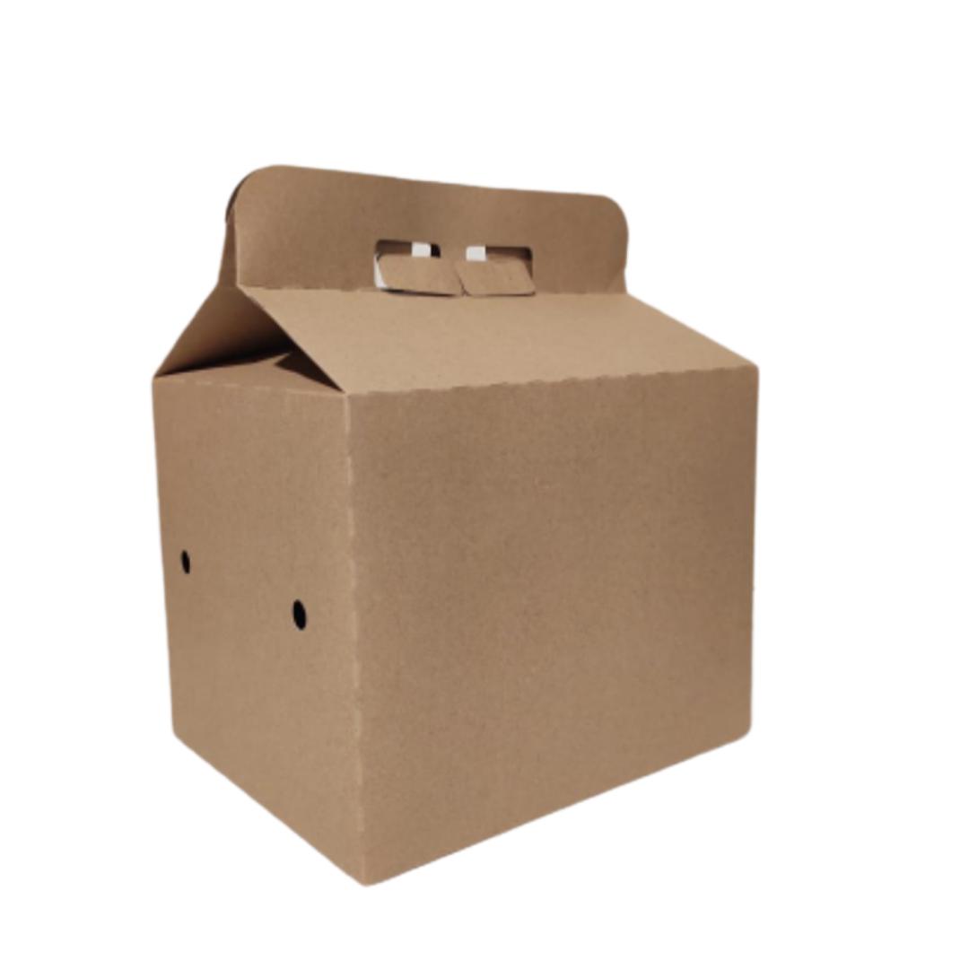 Box Familiar 24,6x19,4x19,6